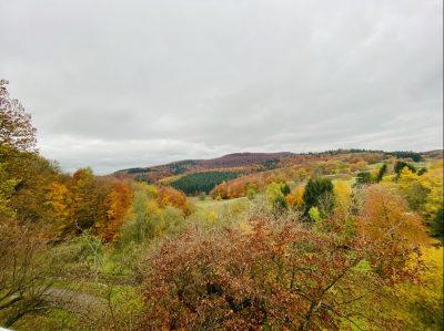 EFH Seeheim-Jugenheim 06